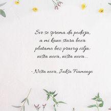 Najljepši stihovi iz pjesama Olivera Dragojevića - 6