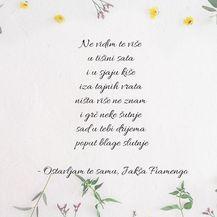 Najljepši stihovi iz pjesama Olivera Dragojevića - 8