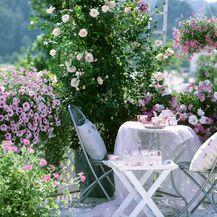 Terase i balkoni stvoreni za ljetnu uživanciju - 8
