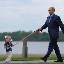 Ismijavanje Trumpa (Foto: boredpanda.com) - 28