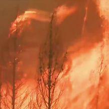 Požari u Kaliforniji (Video: APTN)