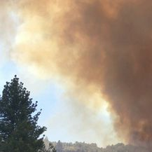 Požar u okolici Idyllwilda (Video: Reuters)