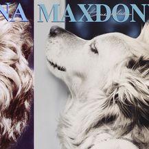 Pseća Madonna (Foto: Instagram/max_et_vincent) - 8
