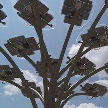 Pametno stablo na plaži u Osijeku (Foto: Dnevnik.hr) - 2