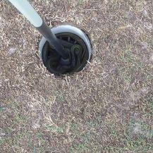Australska čudovišta (Foto: boredpanda.com) - 38