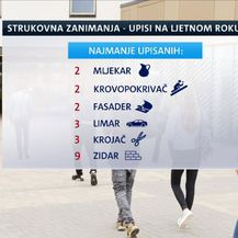 Strukovna zanimanja, upisi učenika na ljetnom roku (Foto: Dnevnik.hr)