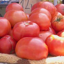 Zrele rajčice (Foto: Dnevnik.hr)