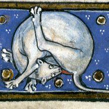 Povijesne mačke (Foto: sadanduseless.com) - 9