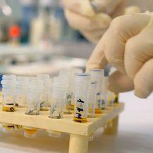 Hrvatski znanstvenici neprestano rade na tome da budu konkurentniji i kompetitivniji na tržištu