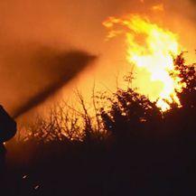 Vatrogasac gasi požar kraj Šibenika (Foto: Dnevnik.hr)