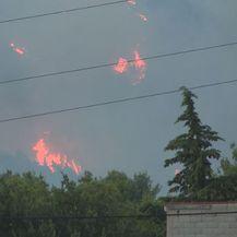 Požar kraj Šibenika (Foto: Dnevnik.hr)