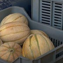 Novi oblik prodaje lubenica - 1