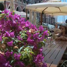 Šušur u Splitu - 2