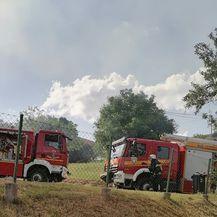 Požar u Planini Donjoj u Zagrebu - 1