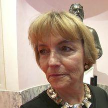 Vesna Pusić o koaliciji HNS-a i HDZ-a (Video: Dnevnik.hr)