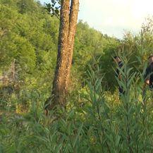 Policajci nadgledaju granicu (Foto: Dnevnik.hr)
