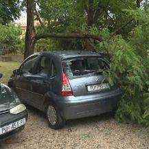 Šteta od nevremena u Puli (Foto: Dnevnik.hr)