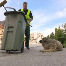 Najljepša priča o prijateljstvu između psa i čovjeka (Foto: Dnevnik.hr) - 6