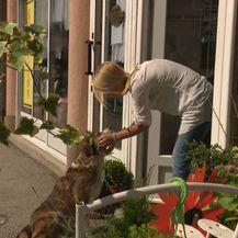 Najljepša priča o prijateljstvu između psa i čovjeka (Foto: Dnevnik.hr) - 9