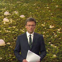 Posljedice tuče (Video: Vijesti u 17h)