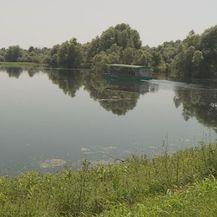 Park prirode Kopački rit (Foto: Dnevnik.hr)