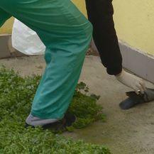 Osijek na nogama zbog mogućih trovanja (Foto: Dnevnik.hr) - 3