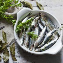 Sardine su odličan izvor omega 3 masnih kiselina