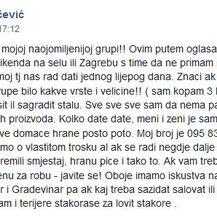 Ivan Kovačević - oglas (Foto: Facebook)