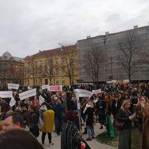 Prosvjed u Zagrebu (Foto: Dnevnik.hr) - 2