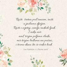 Poezija kao nadahnuće - 5