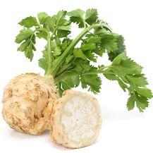 11. Celer