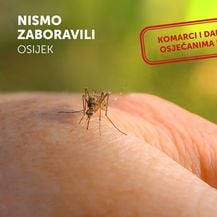 Nismo zaboravili - Osijek, lokalni izbori 2017. - 3