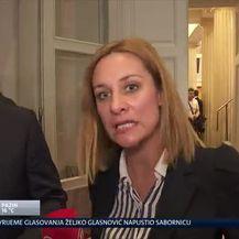 Ivana Brkić Tomljenović uživo u Saboru (Video: Dnevnik.hr)