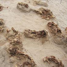 Peru: Pronađeno mjesto najvećeg žrtvovanja djece u povijesti, 140-ero djece zvjerski žrtvovano (Foto: Gabriel Prieto/National Geographic)