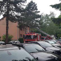 Požar u Remetinečkom gaju (Foto: Dnevnik.hr)
