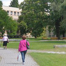 Žene u parku, ilustracija (Foto: Nikola Cutuk/PIXSELL)