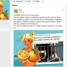 Pipi traži djevojku koja se sunčala gola (Printscreen Facebook)