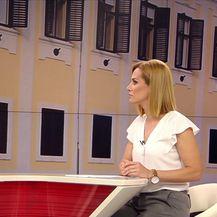 Milorad Pupovac o prikupljanju potpisa za referendume (Video: Dnevnik Nove TV)