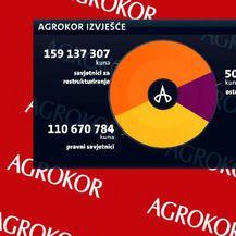 Novi problem za grupu Borg (Foto: Dnevnik.hr) - 1