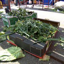 Višak hrane na tržnici (Foto: Dnevnik.hr) - 1