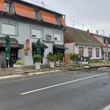 Srušeno stablo u centru Đakova (Foto: Facebook) - 4