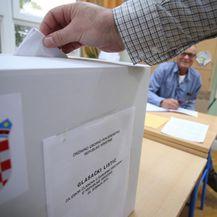 Izbori za Europski parlament (Foto: Ivo Cagalj/PIXSELL)