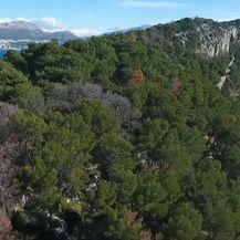 Park-šuma Marjan - 3
