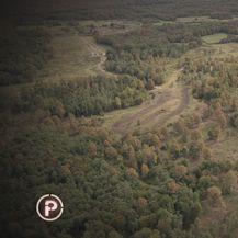 Šuma - 2