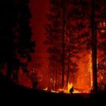 Najgori požar u povijesti Kalifornije (Foto: AFP)