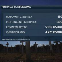 Potraga za nestalima (Foto: Dnevnik.hr)
