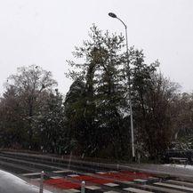 Snijeg u studenom (Foto: Mirta Vranješ)