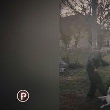 Zlostavljanje i mučenje životinja (Screenshot: Provjereno Nove TV) - 8