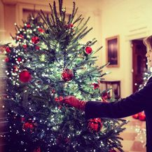 Melania Trump (Foto: Twitter)