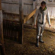 Farma (FOTO: Dnevnik.hr)